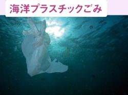 2050年には魚よりもプラごみの方が多くなるとの推計も<br /><small>●生態系に悪影響を及ぼすプラスチック</small>