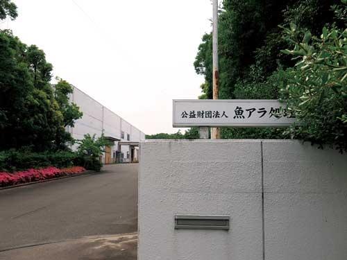 <b>名古屋港に面した倉庫街にある魚アラ処理公社。ピーク時は1万トン以上が運ばれてきた</b>