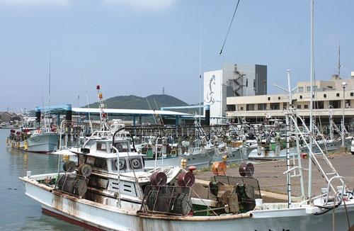 <b>長崎県壱岐市の勝本漁港。クロマグロ一本釣りの拠点だ</b>