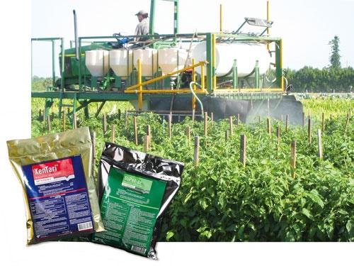 """<span class=""""fontBold"""">BT剤は最も普及している生物農薬の一つ。チョウやガの仲間に効く</span>"""