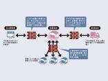 物流、「デジタル化の壁」突破へ 荷主とデータでスムーズに連携