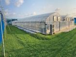 植物工場、立地・コストの壁越える 異常気象と消費の変化追い風に