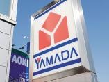 ヤマダ、JALも参入のネオバンク 銀行は「機能バラ売り」時代に