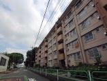 高齢化による分断の影響 「昭和の郊外団地」に分断される高齢者