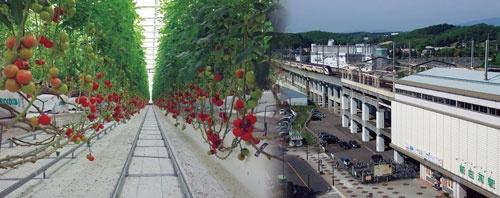"<span class=""fontBold"">日本の村で唯一、新幹線の駅(新白河駅)がある福島県南部の西郷村。震災直後、隣接する下郷町とともに、大規模な植物工場などを建設する計画が浮上していた</span>(写真=2点:PIXTA)"