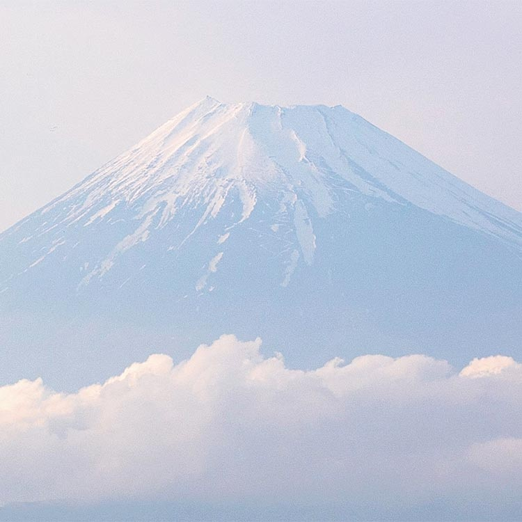 「異形の産業」を脱却 防衛が日本経済を救う