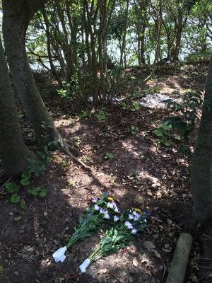 以前、まかれた場所には造花が置かれていた。既に完全に土に還っている。奥のほうに今、撒いたばかりの散骨場が見える