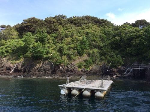 浮き桟橋が設けられた散骨島。ここから崖を上がって島の上部で散骨する。