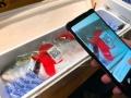 「高値で買いたい!」中国人期待の日本産水産物のカラクリ
