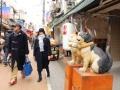 春節、日本で「冷門」に集う中国人