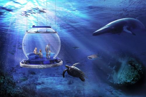 海中バルーンのイメージ。直径3mのアクリル球体をワイヤーで吊り下げ、沈没船や魚群を観察できる