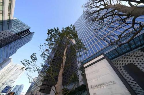18年8月に竣工した日本生命浜松町クレアタワー(写真右)は、日本生命が1000億円かけて開発したオフィス・商業ビルだ(写真:PIXTA)