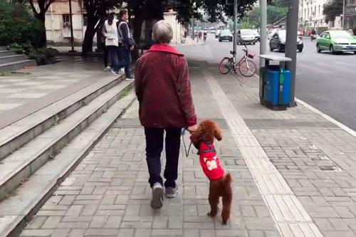 中国でも急速に高齢化が進んでいる(中国・成都市、写真:ロイターアフロ)