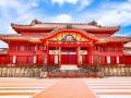 沖縄の首里城再建、「悲しみに暮れる時間も必要」