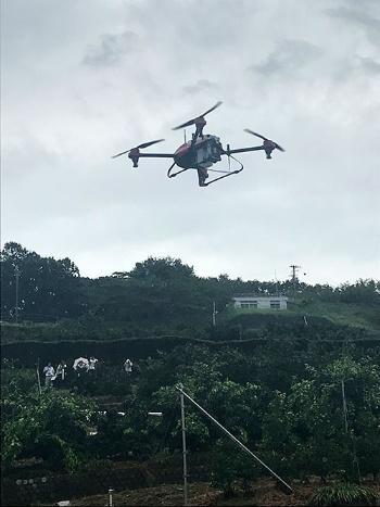 愛媛県では柑橘(かんきつ)類へのドローンによる農薬散布を実演した