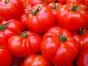 カゴメとは? 「トマトだけではない」大手食品メーカーの取り組み