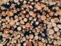 ウッドショックとは? 新型コロナによる木材価格高騰がもたらすこと