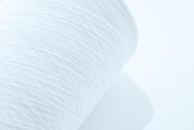 サステナブルな素材として注目されるポリ乳酸の糸(写真提供=TBM)