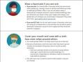 米国も布製マスク推奨、「不織布は医療機関優先」に日米腐心