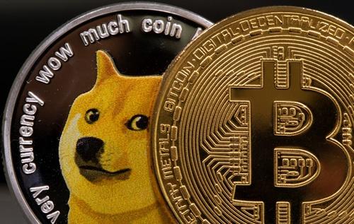 ドージコインのロゴはシバイヌ(写真=ロイター/アフロ)