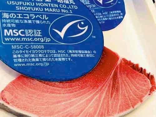 臼福本店(宮城県気仙沼市)は世界で初めて、タイセイヨウクロマグロでMSC漁業認証を取得した。マグロ1匹ごとに来歴を示す電子タグも付けて出荷している(写真:臼福本店)