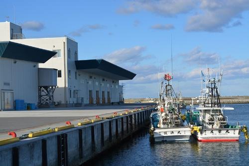 20年に再び水揚げが再開された請戸漁港。ヒラメやカレイ、タラを引き揚げ豊洲へ送る
