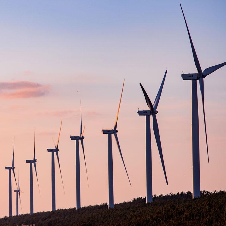 脱炭素は企業にとって束縛かチャンスか、EYインタビュー