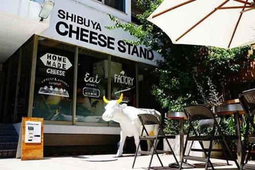 出来たてのフレッシュチーズが味わえるSHIBUYA CHEESE STAND