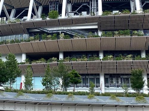2021年7月の植栽の状況(写真:宮沢 洋)