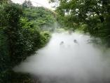 よみうりランド「ポケモンの森」は令和の「昆虫採集場」
