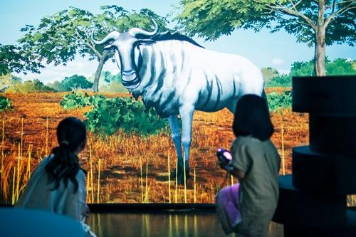 生き物たちがデジタルアートによって図鑑から飛び出し、超至近距離で観察できるのが特徴だ