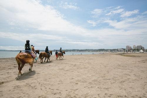 馬が海岸を歩く光景は当たり前になった(写真=的野弘路)