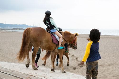 馬は子供にも人気だ(写真=的野弘路)