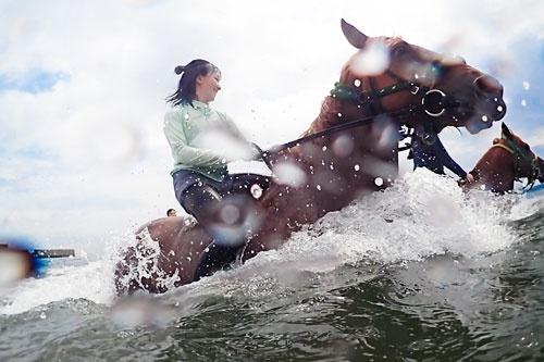 馬はすごいスピードで海の中を駆ける(写真=的野弘路)