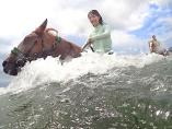 馬と海水浴 珍企画で三浦海岸の景色を変えた乗馬クラブ