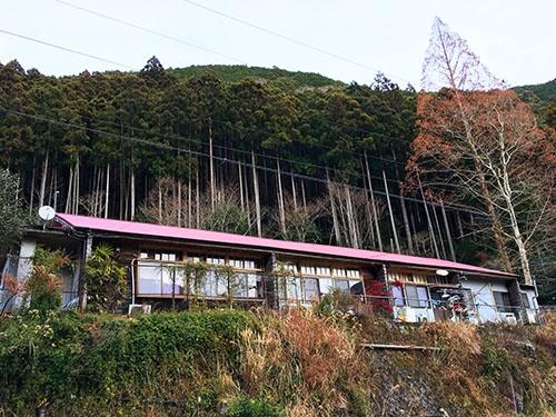 山にへばりつくように立つ共生舎(和歌山県田辺市)。廃校となった校舎を利用している。同じ敷地内にある離れ(家)を改造して暮らしている住人もいる。