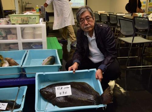 福島第一原発沖10キロの海域で採れたヒラメ
