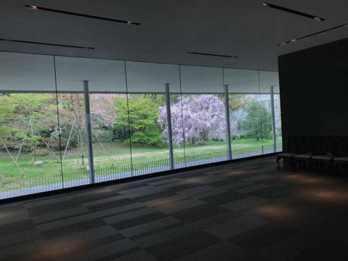 芝蘭会館の桜。医学部創立100周年で建てられたそうで、稲盛和夫さんに京都大学が寄付をお願いしたそう。私が卒業した鹿児島大学にも稲盛会館という、同じく寄付していただいた会館がありました。稲盛さんは鹿児島大学卒業でした。不思議なご縁ですね