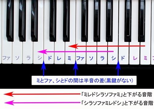 (ピアノの鍵盤を頭に置くと理解しやすいです。白鍵は、左の白鍵より全音高い音が、黒鍵は左の白鍵より半音高い音が出ます。ミとファ、シとドの間は半音の差になっていますので、間に黒鍵がないことに注目です。さて、伊福部昭氏のこだわった音階、赤の矢印、ピンクの矢印は、おしまいの音である主音=赤の矢印の「ミ」とピンクの矢印の「シ」が、その前の音より半音低いことが、間に黒鍵がないことから分かりますね。その下より全音高いことは、こちらは間に黒鍵があることから分かります)