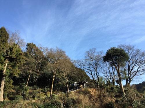 清閑寺に続く山道(写真:殿村美樹、以下同)