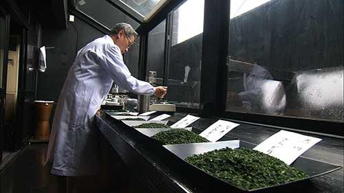 社長自らが毎日茶葉をブレンドする