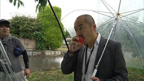 山梨まで桃の様子を確認にいく、八木清貴社長