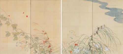 酒井抱一《夏秋草図屏風草稿》(1821年[文政4年]、出光美術館蔵)