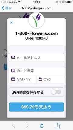 写真10●Webビューでの決済画面