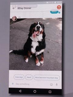 写真8●メッセージングアプリのAllo