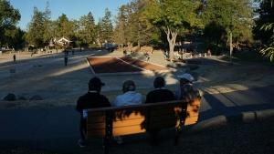 写真15●普段は若者を見かけることのない公園
