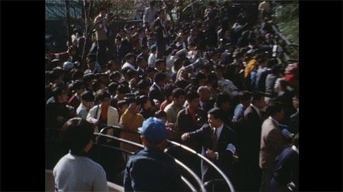 「立ち止まらないで下さい!」。2時間並んで30秒、2kmの行列の先にいるパンダを見るために人々が押し掛けた