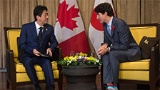 「TPP11」は「仮想中国」との交渉だった