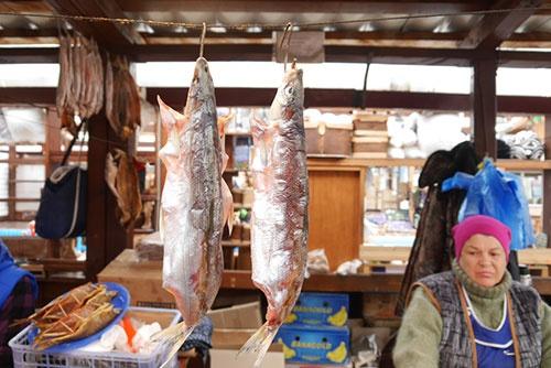 <b>腹を広げて干されている魚(撮影:二村嘉美)</b>