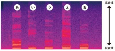 五十音にはそれぞれ特徴がある<br />●音域ごとの音量を可視化した分析図
